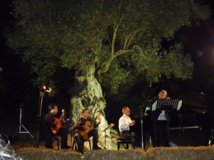 Concert against the background of an ancient Saracen olive tree featuring the music of Ennio Morricone.